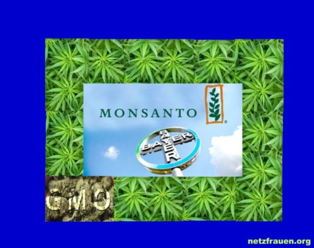 US-Regierung hat ein Patent auf medizinisches Marihuana – Bayer-Monsanto wird sich die Marihuana-Industrie unter den Nagelreißen!