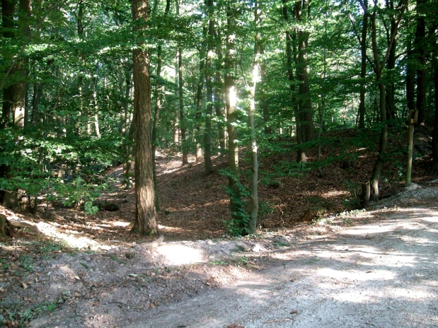 Landschaftstempel Kapellenberg